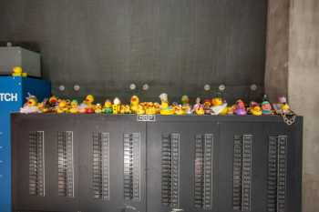 Orpheum Theatre, Phoenix: Backstage Duck Collection
